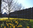 University_of_Sussex_Campus_2